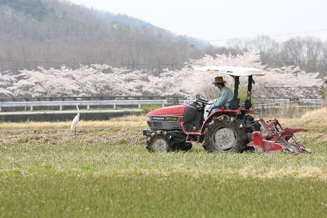 製造業企業による農業・水産業への参入